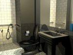 disabled_bathroom2.205104738_large.jpg